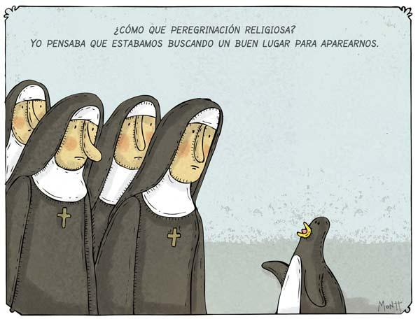 Peregrinación Religiosa?